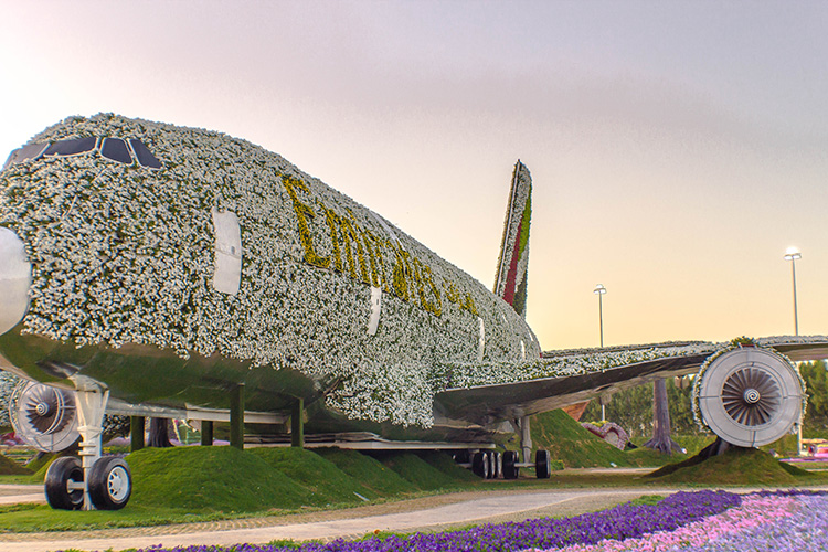 Front view of Emirates A380 at Dubai Miracle Garden