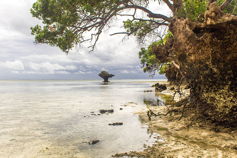 A view of Chale Island during the low tide