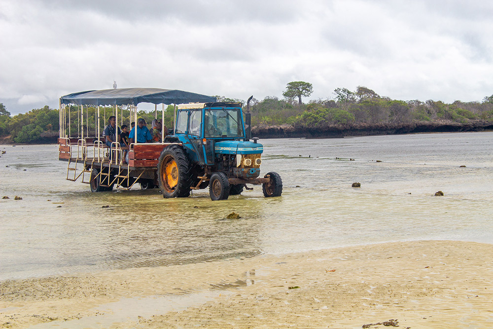 Tractor crossing the ocean between the Chale Island and the main land during low tide